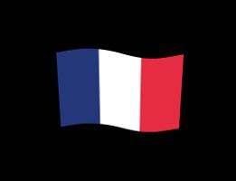 france_flag.png (9 KB)