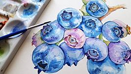 blueberries-3537980_1920.jpg (20 KB)